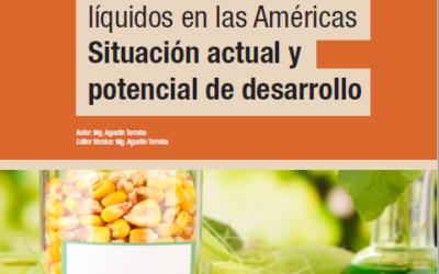 Los Biocombustibles líquidos en las Américas Situación Actual y potencial de desarrollo